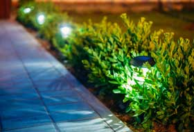 Sidewalk lined with greenery and lights.